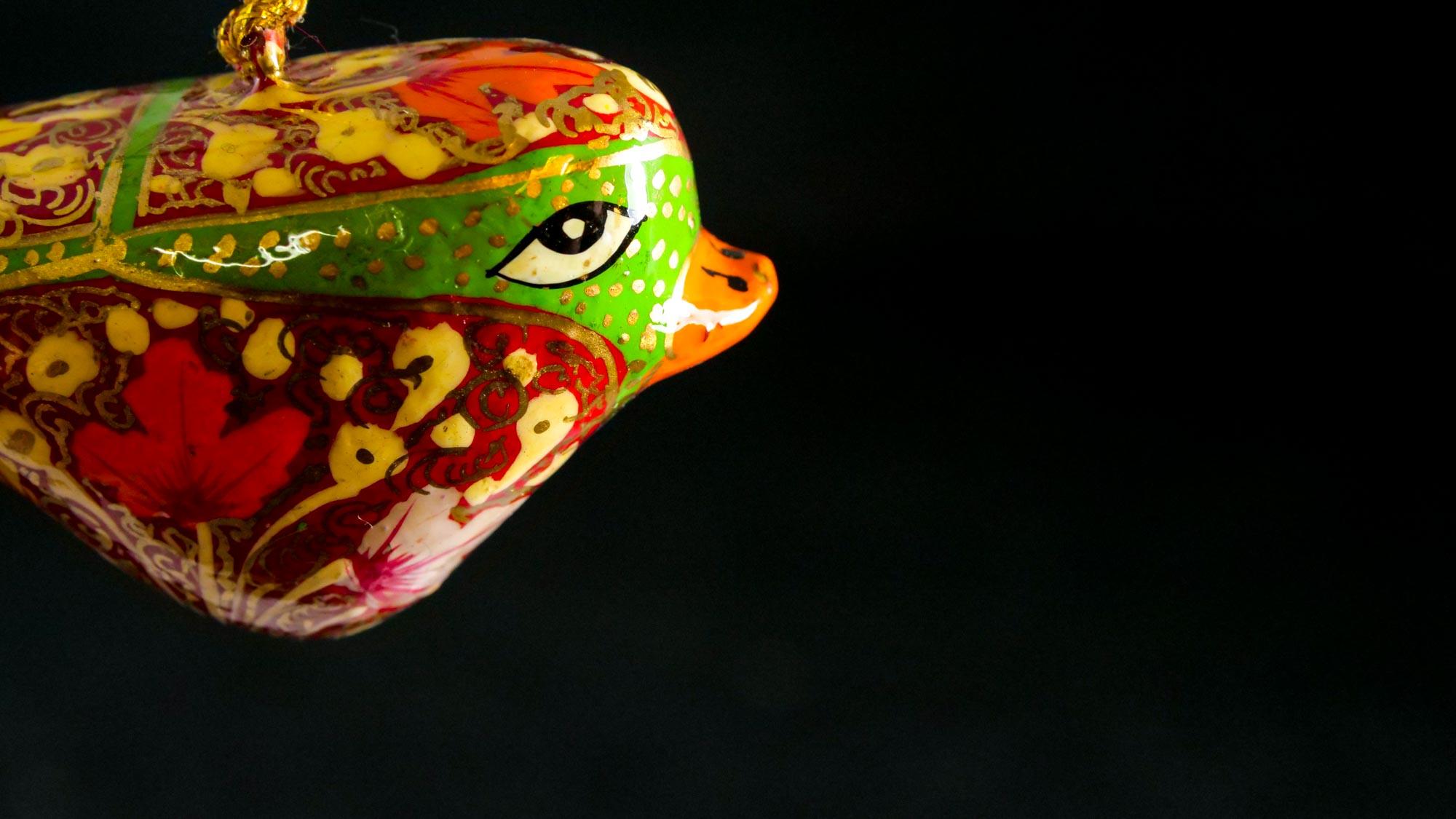 Kashmir 'Vogel'